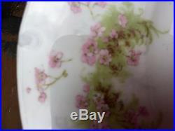 49 Pc SET Serves 12 THEODORE HAVILAND LIMOGES FRANCE Schleiger Pink Roses GILT